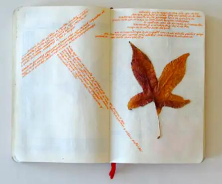 Visual: Mi mundo privado (en un cuaderno) 4