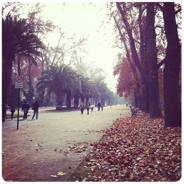 Un paseo por la Quinta Normal 1