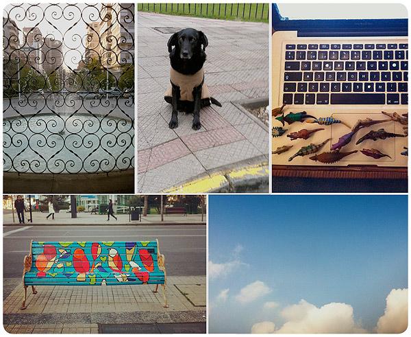 Álbum Zancada: las fotos que le mostrarías a tus amigas 1