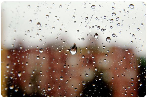 Fantasía: quedarme acostada todos los días nublados 1