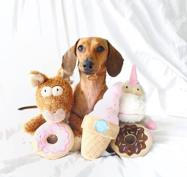 Ideas de regalos: Fuzzyard, accesorios para tus perritos 1