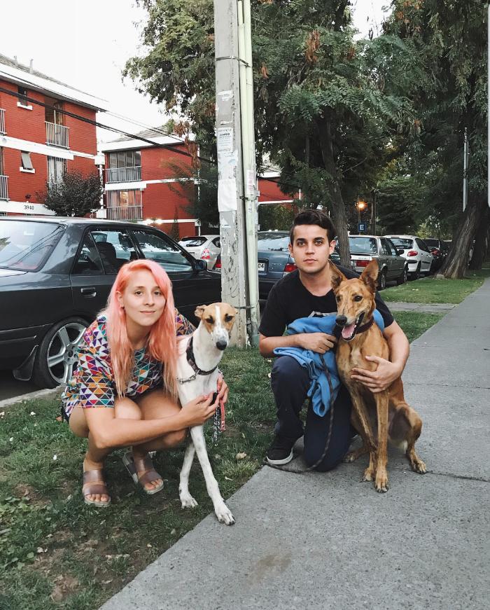 Mascotas & compañer@s: Isadora, Toldo y Mini Bilz 1