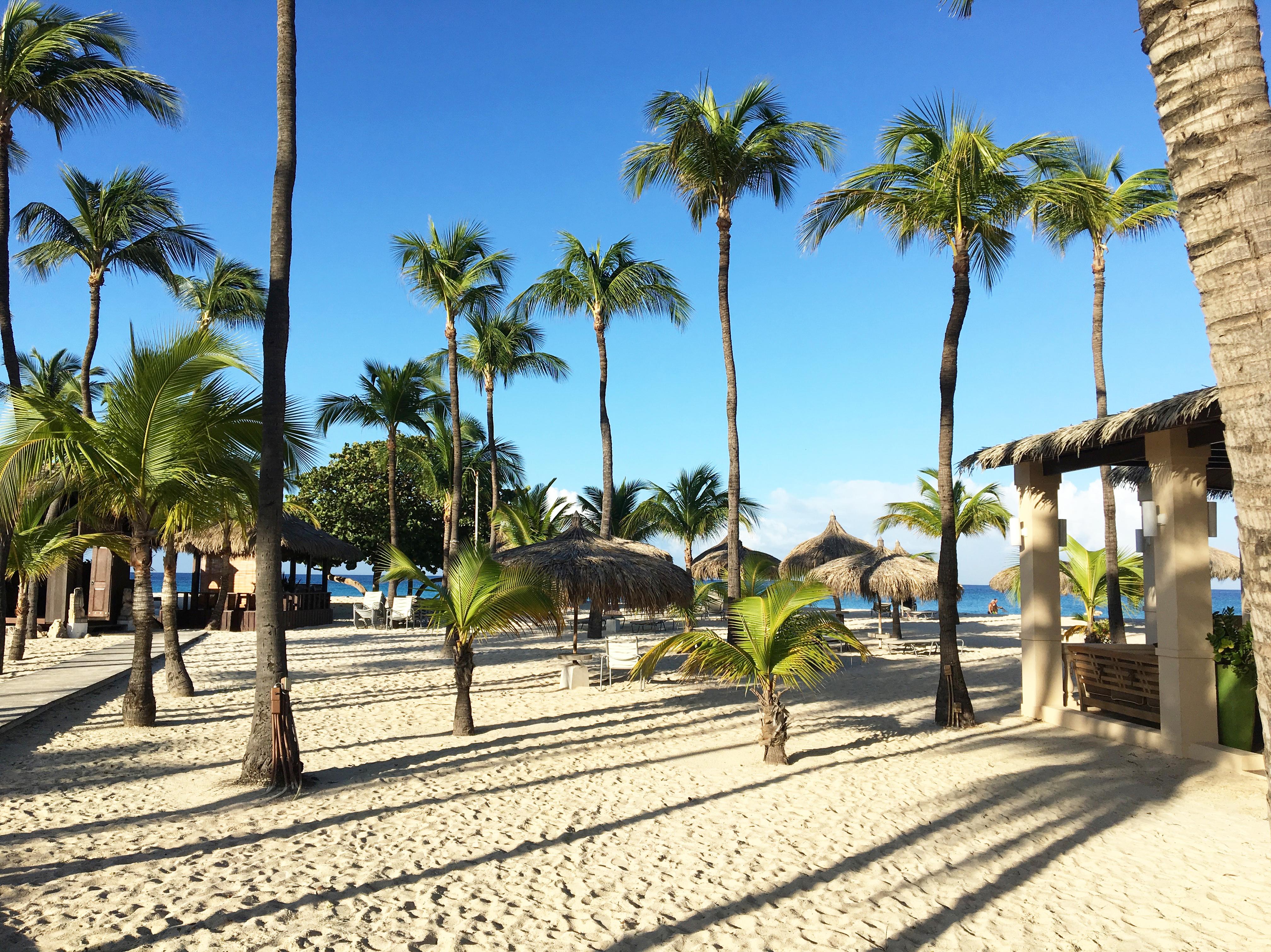 Aruba: Una isla feliz los 365 días del año 3