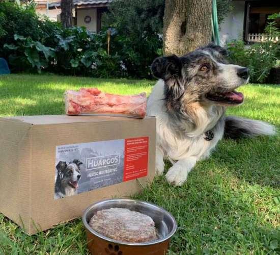 huargos comida de perros