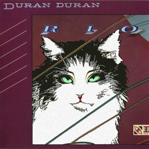 The kitten covers, discografía dominada por gatitos 10
