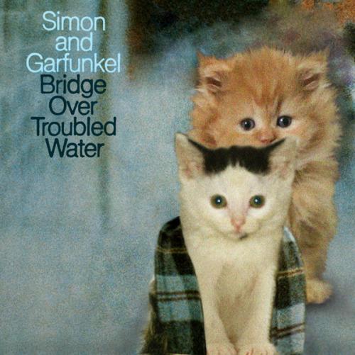 The kitten covers, discografía dominada por gatitos 11