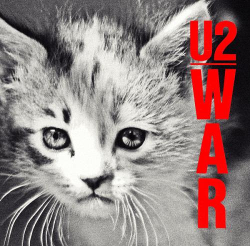 The kitten covers, discografía dominada por gatitos 12