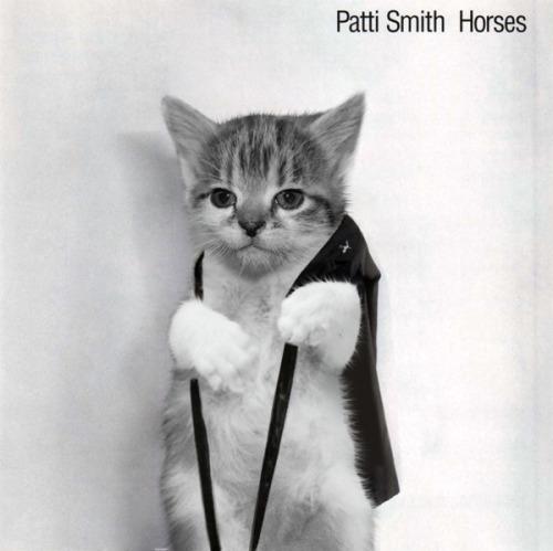 The kitten covers, discografía dominada por gatitos 25