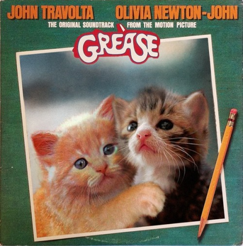 The kitten covers, discografía dominada por gatitos 28