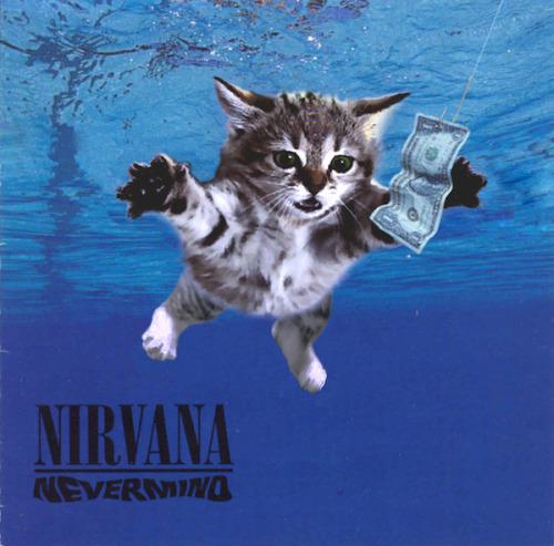 The kitten covers, discografía dominada por gatitos 3