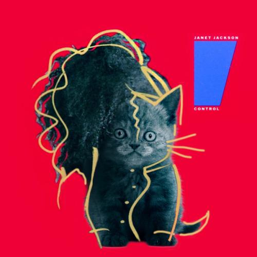 The kitten covers, discografía dominada por gatitos 30