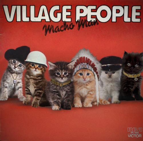 The kitten covers, discografía dominada por gatitos 31