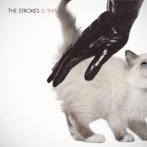 The kitten covers, discografía dominada por gatitos 33