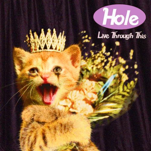 The kitten covers, discografía dominada por gatitos 37