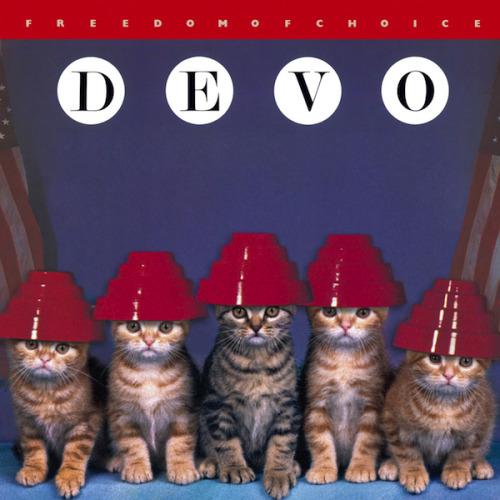 The kitten covers, discografía dominada por gatitos 4