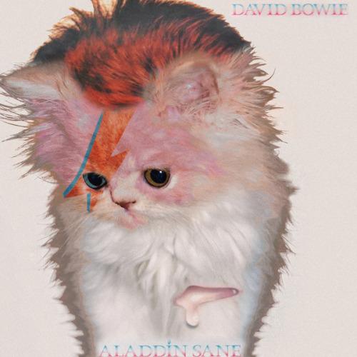 The kitten covers, discografía dominada por gatitos 6