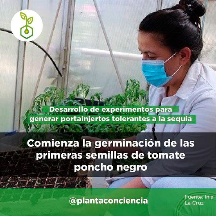 Planta ConCiencia