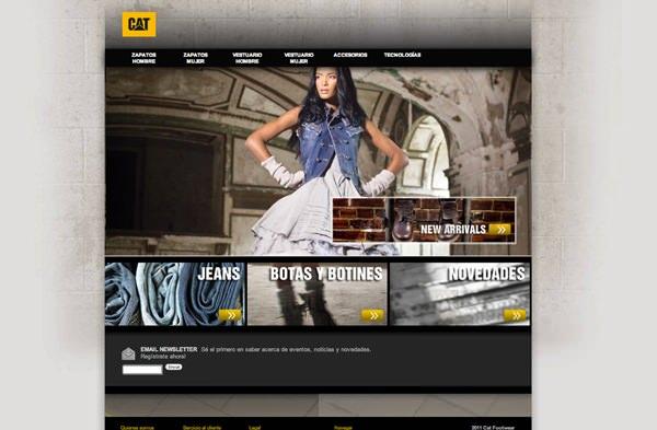 CAT lanza su sitio web en Chile 3