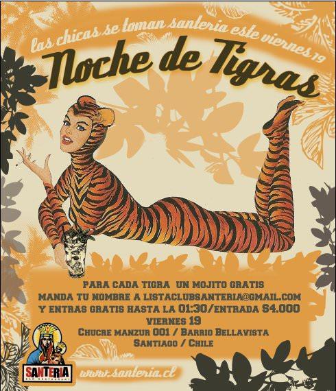 VIE/19/11 Noche de tigras 1