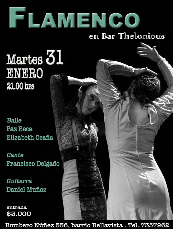 Noche de flamenco 1