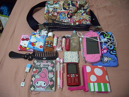 ¿Qué llevas en tu cartera? 1