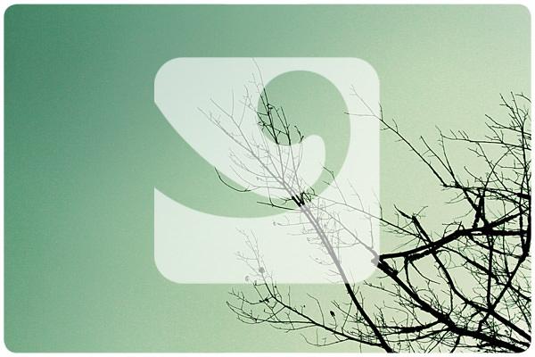 Nuevo diseño de Zancada.com 1