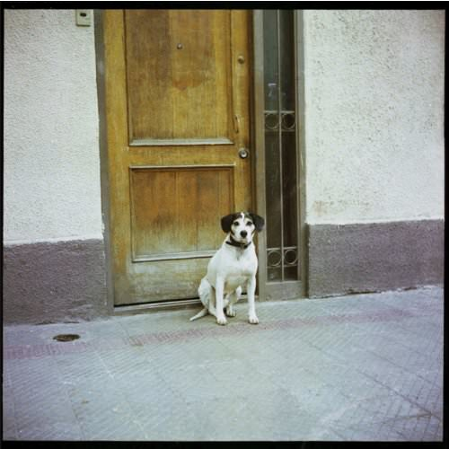 Descarga gratis Dos, el nuevo disco de Les Ondes Martenot 1