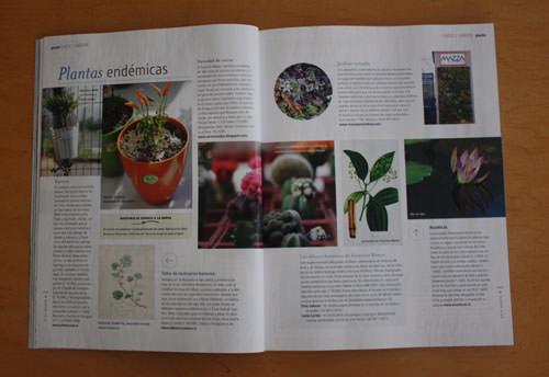 Revista Paula, edición Bicentenario 4
