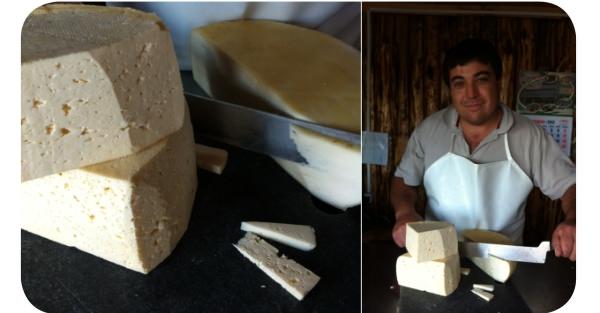 El verdadero queso Chanco 1