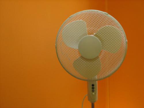 Amo mi ventilador 1